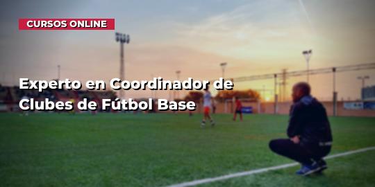 Copertura del corsoCoordinatore sportivo esperto di squadre di calcio (Universidad Católica Ávila)