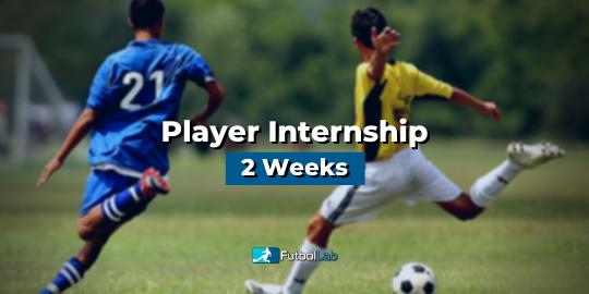 Course CoverPlayer Internship 2 Weeks