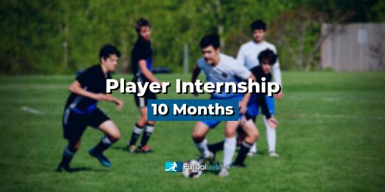 课程封面实习玩家10个月
